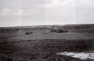 GunnhildargerdiLitil